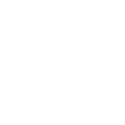 Javi P's Mexican Food